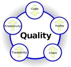 Quality management in the company Marlik Sun