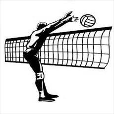 Research volleyball