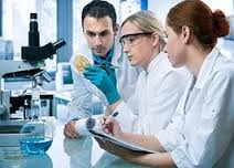 Medical Bacteriology laboratory report