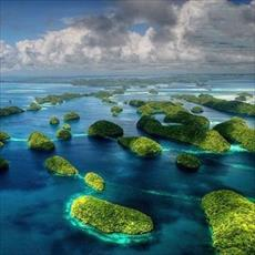 Research on the theory that life began in the sea and land transport