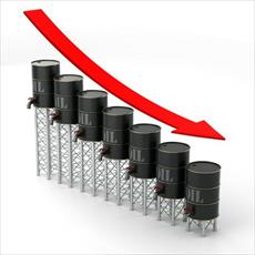The thesis analyzes the impact of oil prices on the economy