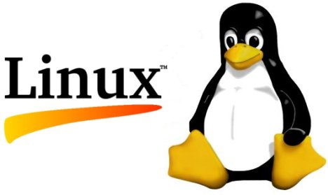 Article Linux