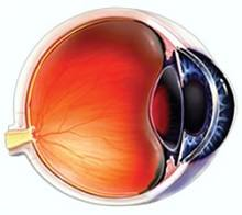 Light the paper and Ophthalmology