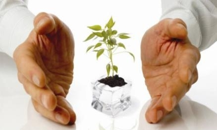Paper Agronomy and Plant Breeding