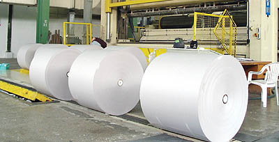 Paper pulp and paper industry
