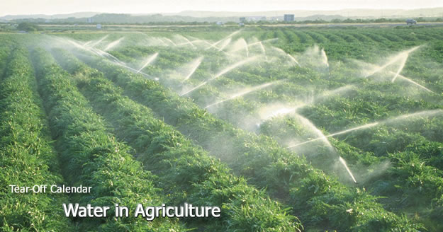 Water and irrigation in agriculture
