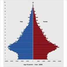 Drawing of the population age pyramid