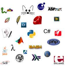 Research a variety of programming languages