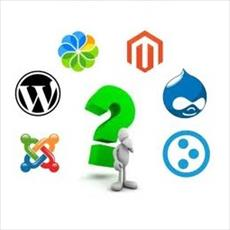 The content management system (cms)