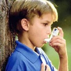 The relationship between asthma and environmental pollutants