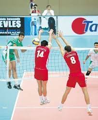Article volleyball