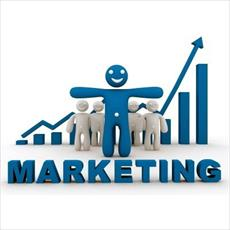 PowerPoint Marketing Research and Information Systems