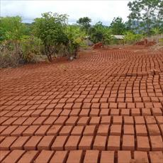 Brick plant projects