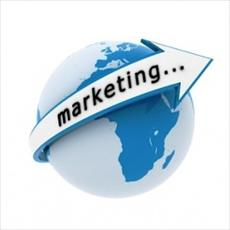 Marketing research (Marketing)